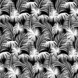 无缝夏威夷的模式 向量例证