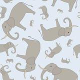 无缝大象的模式 库存照片