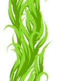 无缝抽象草的模式 与绿色波浪的装饰swirly装饰品 库存例证