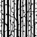 无缝森林的模式 免版税库存照片