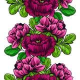 无缝植物的模式 免版税库存图片