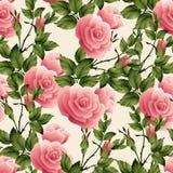 无缝模式的玫瑰 也corel凹道例证向量 免版税库存照片