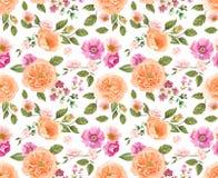 无缝模式的玫瑰 背景细部图花卉向量 设计构成 免版税库存图片