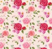 无缝模式的玫瑰 背景细部图花卉向量 设计构成 图库摄影