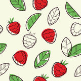 无缝模式的莓 库存图片