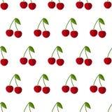 无缝樱桃的模式 免版税库存图片