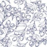 无缝橄榄色的模式 免版税库存照片