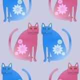 无缝的与花的样式摘要红色和蓝色猫 库存图片