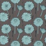 无缝的与蓝色翠菊的葡萄酒褐色花卉样式 免版税库存照片