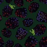 无缝的传染媒介样式用在深绿背景的黑莓 皇族释放例证