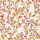 无缝的传染媒介秋天样式用红色和橙色莓果和叶子 秋天五颜六色的花卉背景 典雅花卉 库存图片
