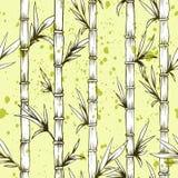 无缝的传染媒介竹树样式 库存例证