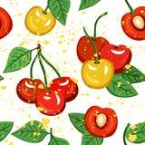 无缝的传染媒介黄色和红色樱桃样式 库存例证