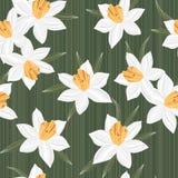 无缝的传染媒介jonquil花纹花样背景 免版税库存照片