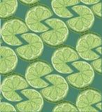 无缝的切片石灰柑橘样式背景 样式剪影 免版税图库摄影