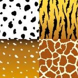 无缝的动物皮毛纹理织品集合 免版税库存照片