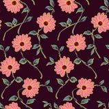 无缝的古典花纹花样有marun背景 皇族释放例证