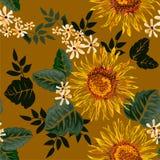 无缝的图表太阳花和白花与绿色叶子在淡黄色背景,传染媒介例证 图库摄影