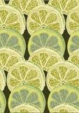 无缝的圆石灰柑橘样式背景 样式剪影 免版税库存图片