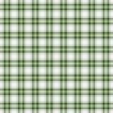 无缝的墙纸格子花呢披肩,绿色 明亮的格子呢纹理 免版税库存照片