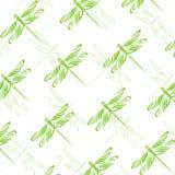 无缝的墙纸蜻蜓 库存例证