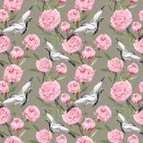 无缝的墙纸-白色起重机鸟跳舞,桃红色花 花卉水彩 免版税库存照片