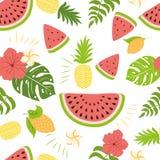 无缝的夏天样式西瓜菠萝热带叶子夏天果子混合设计织品装饰传染媒介 免版税库存照片