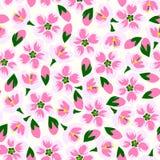 无缝的开花样式的传染媒介例证 免版税库存照片