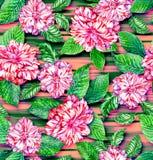 无缝的异乎寻常的花卉样式、桃红色山茶花和热带leav 库存照片
