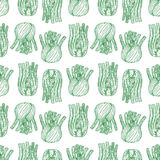 无缝的成熟茴香 免版税图库摄影