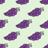 无缝的手拉的样式用葡萄 向量 免版税库存图片