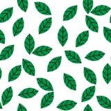 无缝的抽象绿色留下样式传染媒介 库存照片