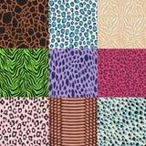 无缝的时尚动物皮毛纺织品印刷品 免版税库存图片