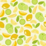 无缝的柑橘-例证 库存照片