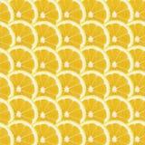 无缝的柠檬切片,五颜六色的样式 免版税库存图片