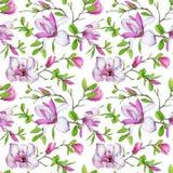 无缝的样式、开花的木兰和织法分支与绿色叶子 库存照片