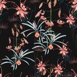 无缝的样式、橙色百合花和普罗梯亚木花与蓝色在黑背景离开 库存例证
