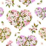 无缝的样式为情人节-与白色和桃红色花的花卉心脏 樱花 水彩 免版税库存照片