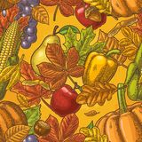 无缝的样式叶子、橡子、栗子、friuits、菜和橡子 向量例证