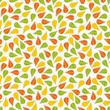 无缝的样式叶子纹理 库存照片