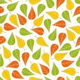 无缝的样式叶子 图库摄影