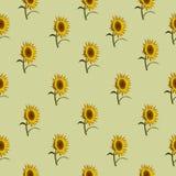 无缝的样式向日葵绿色 免版税库存照片