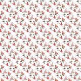 无缝的样式手拉的鸟开花叶子红色桃红色夏天弹簧 免版税库存照片