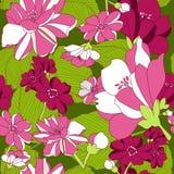 无缝的样式有花卉背景。 免版税库存照片