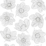 无缝的样式概述开花新仙女木,在白色背景的黑线 免版税图库摄影
