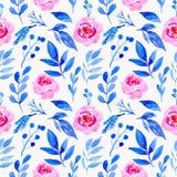 无缝的样式水彩花卉淡粉红色 向量例证