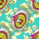 无缝的样式激情花蓝色热带水果传染媒介 库存图片