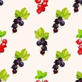无缝的样式用在明亮的背景的黑和红浆果莓果 皇族释放例证