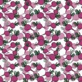 无缝的样式用在白色背景的手拉的桃红色甜菜 向量例证