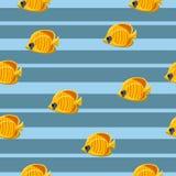 无缝的样式用在蓝色背景的黄色热带海水鱼 r 向量例证